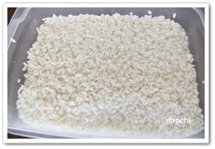 話題の塩麹を手作りする2. 2日目以降の様子